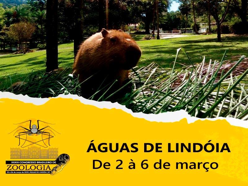 Congresso Brasileiro de Zoologia 2020