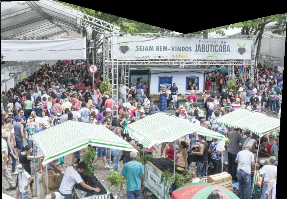 festival da jabuticaba 2020 3